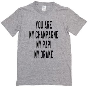 you are my champagne my papi my drake T-Shirt